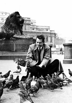 Glenn Ford feeding pigeons in Trafalgar Square in London, 1951
