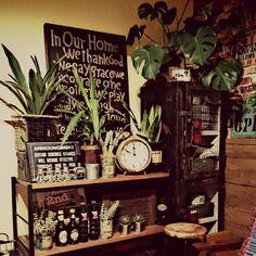 賃貸/観葉植物/手作り/ienowa/アイアン/男前…などのインテリア実例 - 2015-02-28 14:52:45 | RoomClip(ルームクリップ)