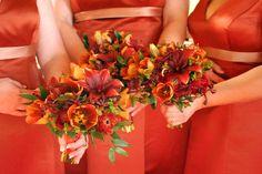 orange hypericum berries - Google Search