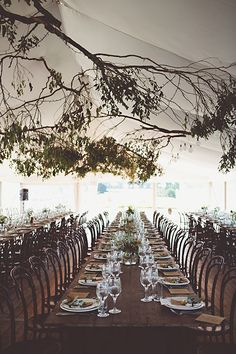 Sarah and Evan's Romantic Country Wedding Beautiful Dark Brown Wedding Inspiration. Recreate this look with chocolate brown table linens, mahogany wood chairs, and custom tent decor. Bush Wedding, Tree Wedding, Wedding Sets, Wedding Reception, Branches Wedding, Wedding Tables, Tree Branches, Elegant Wedding, Rustic Wedding