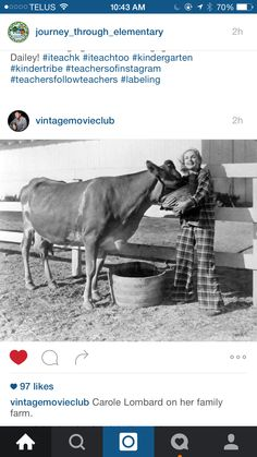 Stellar Vintage Carole Lombard wears plaid pajamas as she hoists a breakfast pail for her cow, Raoul Bova, Cry Like A Baby, Turner Classic Movies, Carole Lombard, Say I Love You, Old Hollywood, In This Moment, Animals, Cow
