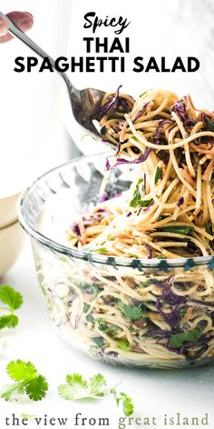 This yummy Spicy Thai Spaghetti Salad is an delicious twist on a potluck classic ~ quick to prepare using common ingredients, the Asian flavors in this colorful pasta salad really pop! #salad #pastasalad #spaghetti #potluck #barbecue #recipe #easy #fromscratch #homemade #summer #Thai #vegan #vegetarian #coldpasta #sidedish