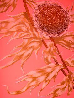 Color Malibu #Rojo #Coral www.facebook.com/malibuespana... Ron de coco Malibu - Coral -