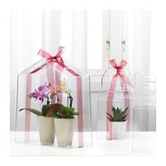 """IKEA - VINDRUVA, Greenhouse, set of 3, $9.99. May be completed with ribbon to secure the top section to the base. Contents: 1 large greenhouse (height 11"""", width 9 1/2"""", depth 4 3/4"""") and 2 small greenhouses (height 9 1/2"""", width 4 1/2"""", depth 4 1/2"""")."""