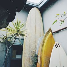 Surf :: Ride the Waves :: Free Spirit :: Gypsy Soul :: Eco Warrior :: Surf Girls :: Seek Adventure :: Summer Vibes :: Surfboard Design + Style :: Free your Wild :: See more Untamed Surfing Inspiration Beach Vibes, Summer Vibes, Summer Surf, Vans Surf, Playa Beach, Good Vibe, Surf Shack, Surf Style, Alana Blanchard