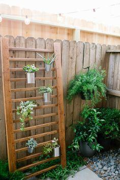 Simple DIY succulent wall accent   sugarandcloth.com