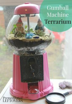Upcycled Gumball Machine Terrarium- Repurpose an old gumball machine by turning it into a terrarium. Your plants will have a safe and decorative home!