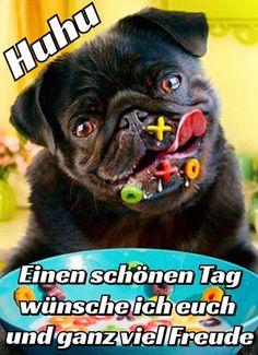 ᐅ Schönen Tag Bilder - Schönen Tag GB Pics - GBPicsOnline Gb Bilder, Friendship, Animals, Good Morning Images, Good Morning Puppy, Stressed Out, Funny Sayings, Jokes, Animales