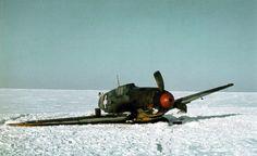 Magyar használatú Me bf sérült gép a földön a Don közelében.