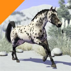 Sims 3 Realistic Horse | Real Horses""