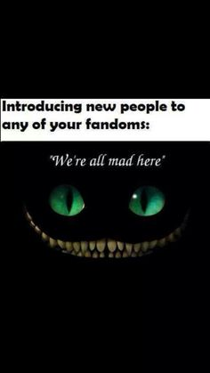 I think the pjo fandom might be a little crazy..,