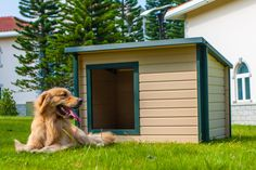 Give your furry friend a comfy, earth-loving home with the New Age Pet EcoFLEX Rustic Lodge Dog House . This attractive dog shelter is made of ecoFLEX,. Large Dog House, Wooden Dog House, Dog House Air Conditioner, Insulated Dog House, Dog House Plans, House Dog, Cool Dog Houses, Wood Dog, Lodge Style