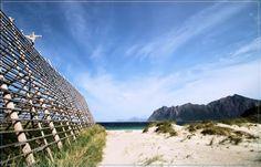 Discover the world through photos. Lofoten, White Sand Beach, Outdoor Furniture, Outdoor Decor, Hammock, Norway, Road Trip, Community, World