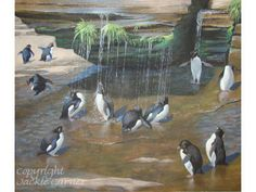 Rockhopper showers - painting in acrylics of a group of rockhopper penguins splashing under a waterfall