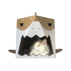 Bulgaria, Cardboard Cat House, Cardboard Boxes, Living On The Edge, Cat Furniture, Toy Boxes, Spray Painting, Cat Gifts, Some Fun