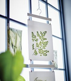 Botanical-themed IKEA TVILLING posters are hung in front of the window.