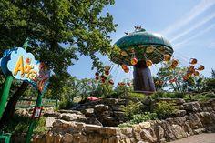 Idén ünnepli fennállásának ötvenedik évfordulóját a Ruszt városához közeli Familypark, Ausztria egyik legnagyobb szabadidőparkja. Ám belegondolunk-e, hogyan is működik egy ilyen létesítmény? Kik és hogyan tartják fenn a varázslatot nap mint nap? Kik felelnek azért, hogy az élmény mind a gyerekek, mind a felnőttek számára felhőtlen legyen?