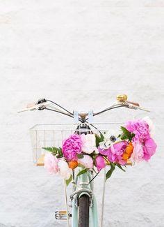Cute idea for the bike if it will happen