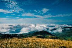 Serra do Quiriri - Campos da Tartaruga, Brasil