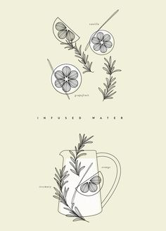 ILLUSTRATED RECIPE / INFUSED WATER