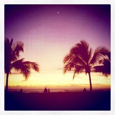 Vintage Beach Palm Trees  Fine Art Photo Print by hawaiiislandart, $6.00