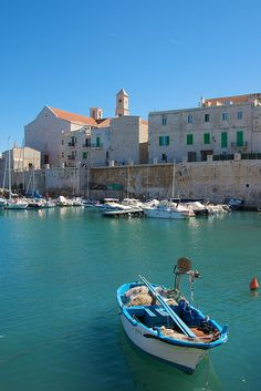 Giovinazzo, Puglia, Italy, province of Bari Bari, Monuments, Places To Travel, Places To See, Italy Landscape, Landscape Design, Empire Romain, Regions Of Italy, Voyage Europe