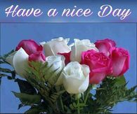 Have A Nice Day, Good Morning