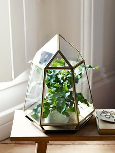 It's time to embrace nature with our stunning unfilled gold prism terrarium. Each statement geometric glass prism features a detachable metal base and arrives unfilled to allow you to create your own botanical display. Fill with an array of succulents and plant life, a pre-potted flower or a bundle of naked wire lights.
