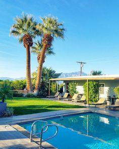 Morning swim before a day of business oh yes.  Varasin työmatkalle hotellin lähinnä kartan ja hinnan perusteella ja oli aika upeaa tajuta päätyneensä pieneen kuumavesilähdekylpylään jossa on SAUNA! Mietin että olisin käynyt aamukävelyllä mutta pulahdinkin aamu-uinnille. Desert Hot Springs elää nimensä veroisesti! (via Instagram)