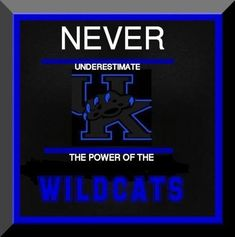 Kentucky Wildcats, Go Big Blue, Uk Football, Kentucky Basketball, Cardinals, Sports, Hs Sports, Kentucky University, Sport