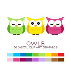 Owl Clipart Owl Digital Clip Art Baby Owl Clipart Owl Party Decoration Owl Baby Shower Girl Boy Owl Party Supplies Instant Download - A00043