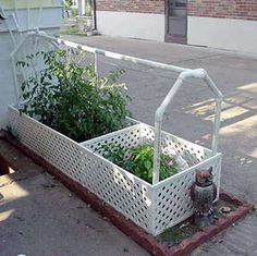 Small garden Lawn - Self Watering Garden Using Recycled Water From an Air Conditioner. Container Gardening, Gardening Tips, Urban Gardening, Urban Farming, Vegetable Gardening, Organic Gardening, Homemade Air Conditioner, Reclaimed Water, Self Watering Containers