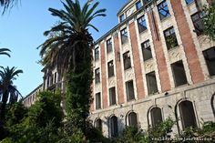 Another very interesting abandoned building in Abkhazia - the palace of prince Smetsky built in 1913.