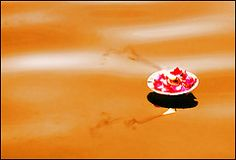 Lamp on Golden River_2 (bnilesh) Tags: light india flower water lamp rose river asian fire petals asia place indian floating holy lucky varanasi soe ganga offered banaras