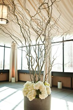 love the curly willow branches!
