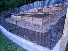 Backyard landscaping hillside garden beds 18 new ideas Terraced Vegetable Garden, Raised Vegetable Gardens, Hillside Garden, Terrace Garden, Sloping Garden, Garden On A Hill, Raised Gardens, Veg Garden, Garden Spaces