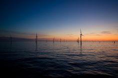 Belwind windfarm