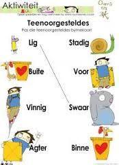 Grade 11 Afrikaans