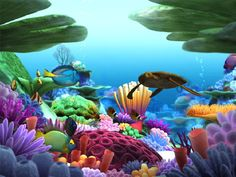 Explore the fascinating beauty of the underwater world with a vibrant coral reef, colorful sponges and gently swaying plants. Description from filecart.com. I searched for this on bing.com/images