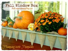 with Pumpkins :: Fall Window Box {Day 31 Extraordinary Days {Fall Window Box ~ Plumping with Pumpkins} {Day 31 Extraordinary Days {Fall Window Box ~ Plumping with Pumpkins} Christmas Window Boxes, Winter Window Boxes, Fall Window Decorations, Thanksgiving Decorations, Holiday Decorations, Seasonal Decor, Pumpkin Decorating, Porch Decorating, Fall Vignettes