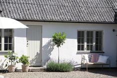 Future Islands, Modern Barn House, Scandinavian Home, Back Gardens, Cottage Homes, Windows And Doors, Home Decor Inspiration, House Colors, Future House