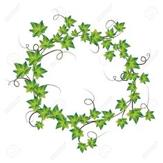 Illustration Of Green Ivy Vector Art Clipart And Stock Vectors