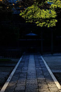 Twilight at the Japanese temple