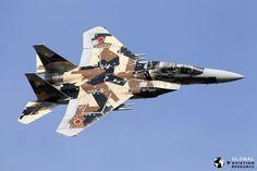 Mitsubishi F-15J of the Hiko Kyodotai (Tactical Fighter Training Squadron).[1024  683]