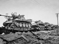 Panthers on rail cars being transported