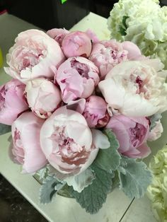 Wedding Flowers: Peonies & Dusty Miller bouquet for the Bride ~Creative Place