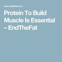 Protein To Build Muscle Is Essential – EndTheFat