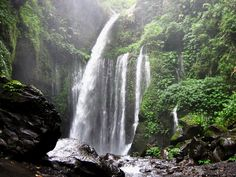 Tiu Kelep Waterfall, Lombok Indonesia