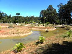 Jardim da Contemplação 1- Ambiental