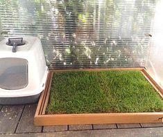 die besten 25 hundetoilette ideen auf pinterest hundelaufplatz outdoor hundeh tten und hund. Black Bedroom Furniture Sets. Home Design Ideas